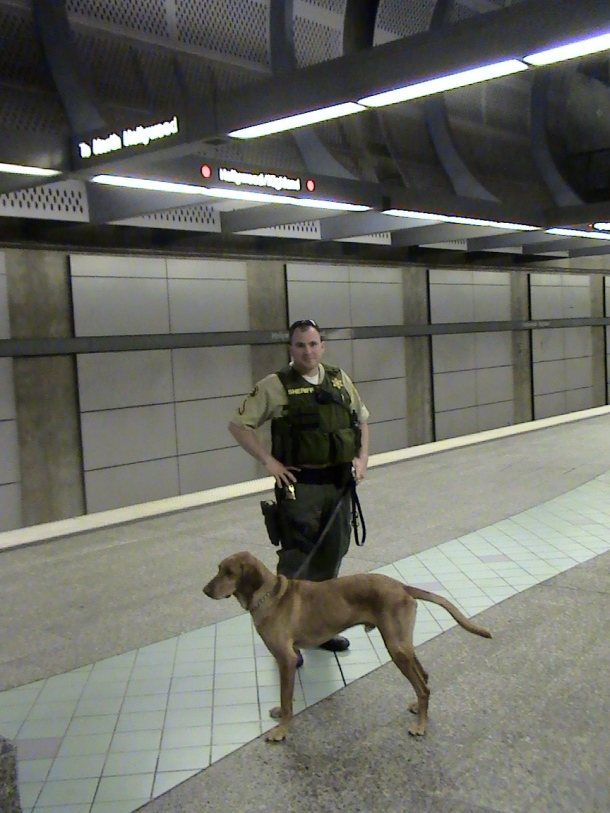 Dogandcop